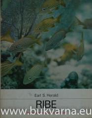 Ribe  ilustrirana enciklopedija živali