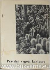 Pravilna vzgoja kaktusov